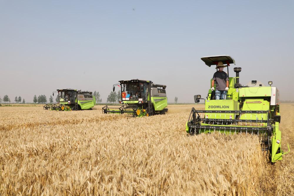 高效麦收作业