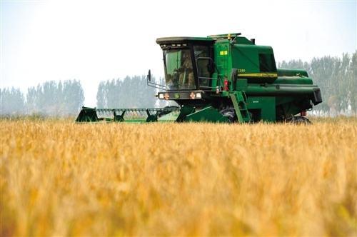 农业部公布第一批全国农垦农作物良种展示示范基地