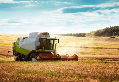 农业部关于加快东北粮食主产区现代畜牧业发展的指导意见