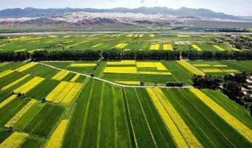 农业部 国家发展改革委 财政部关于加快发展农业生产性服务业的指导意见