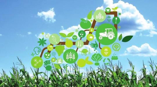 """青年科学家论道""""互联网+未来农业装备"""""""