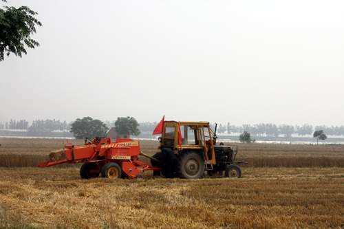 农业部:秸秆综合利用,从这7方面加大财政扶持力度