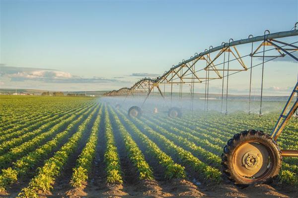 农业发展的最大挑战是什么?