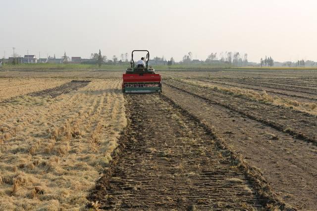 生态农业或为秸秆综合利用最佳出路