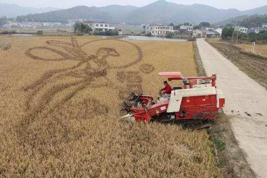 农业服务业短板须着力补齐