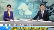 陕西急拨2千万元用于雪天农业救灾