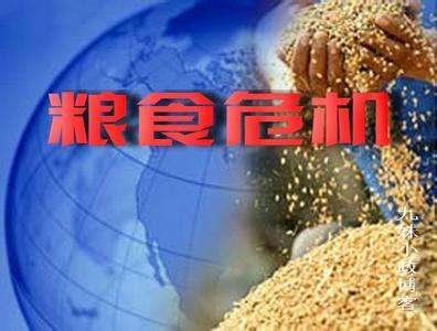 联合国发布报告称:全球粮食危机依然严峻