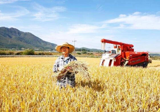 农业科技创新:做给农民看 带着农民干
