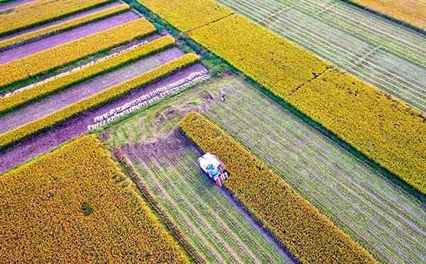 陕西省启用2018年农机购置补贴辅助管理系统