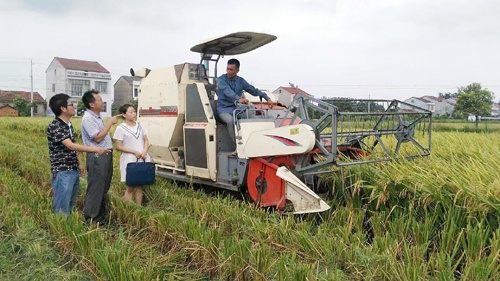 """""""全国水稻第一县""""的全程机械化之路"""