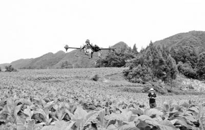 植保无人机大规模应用正当其时