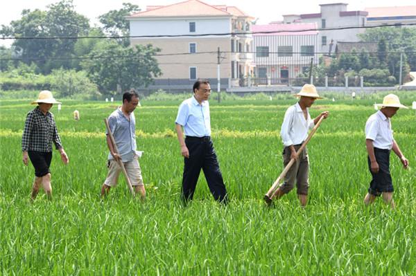农民下水田为李克强让路,被总理一把拉上来