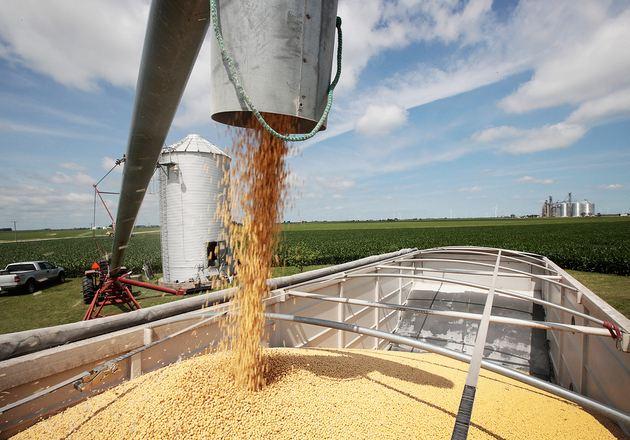 中国大豆进口量预计2018/19年度首降