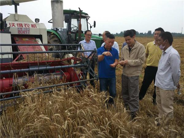李伟国:发挥农机主力军作用 夺取粮食丰产丰收