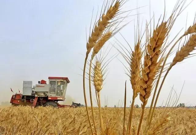 新疆关于开展自治区2017年农机购置补贴产品分类归档工作的通知