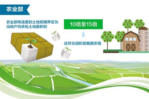 新型经营主体将主导现代农业