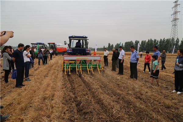 山东小麦正式开镰 全程机械化成亮点