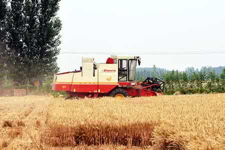 农业部专家指导组发布《倒伏小麦收获收割机调整方法及操作注意事项》