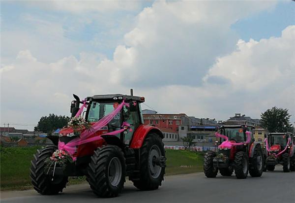 """""""麦赛福格森""""婚车队,见证新一代农机人的成长"""