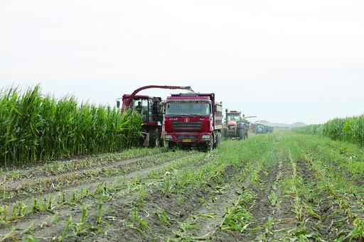 聚焦重大问题 推进农业机械化供给侧结构性改革