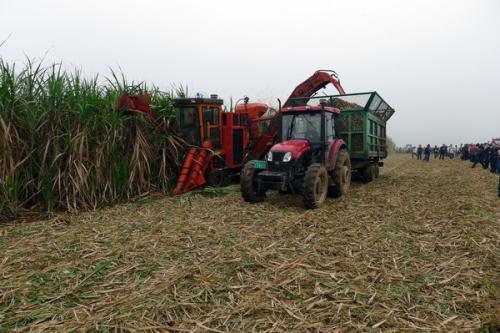 广西关于印发2017年甘蔗收获机质量调查实施方案的通知