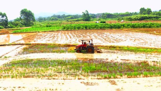 福建省公布2017年第四批农业机械推广鉴定获证产品检测结果
