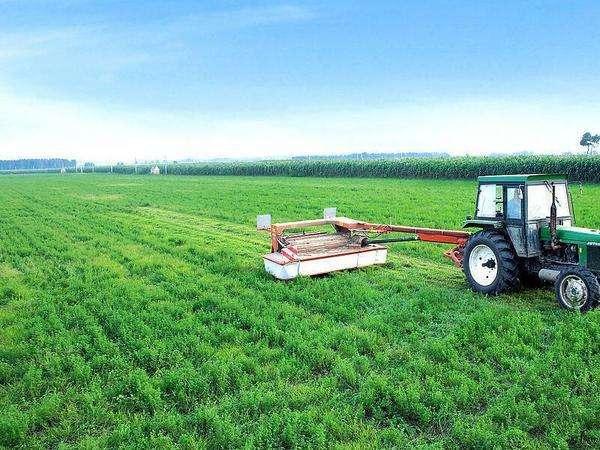 我国农业发展现状前景分析