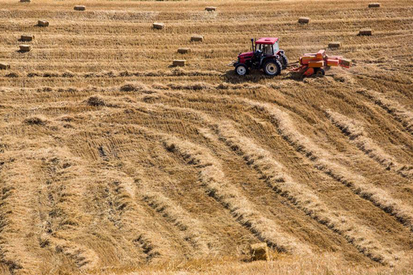 新疆关于报送农机购置补贴新增机具品目的通知