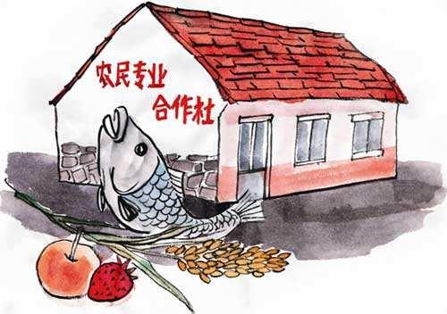 """砥砺奋进""""合作""""兴农  加强合作社规划引导和政策扶持"""