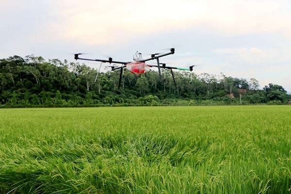 珠海羽人参加2017年中国安徽名优农产品暨农业产业化交易会