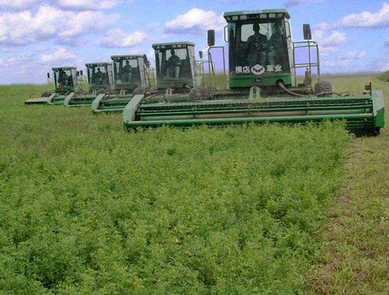 一家一户生产融入农业现代化大生产
