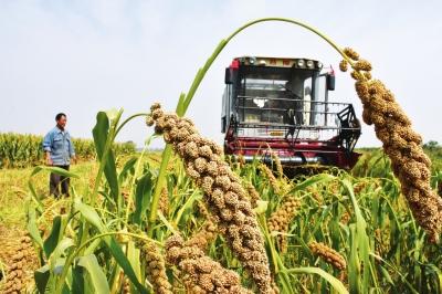 天津市农机办关于报送农机购置补贴新增机具品目的通知