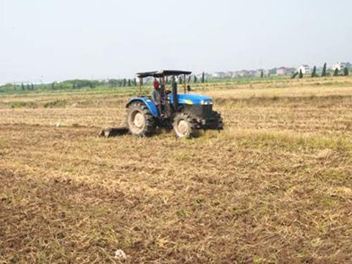 农业部、中央农办确定2017年度农村集体产权制度改革试点单位
