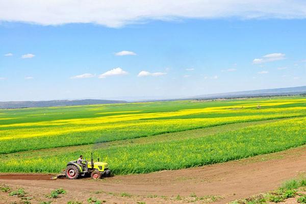 农业部办公厅关于开展农业生产性服务业关键指标试统计工作的通知