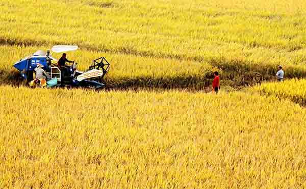浙江省农业机械试验鉴定推广总站关于2017年第三批省级农机推广鉴定获证产品的公告