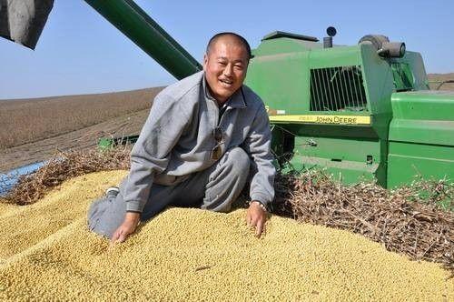 大豆每斤1.9元,中央储备粮库开收!三个因素促使大豆价格触底反弹