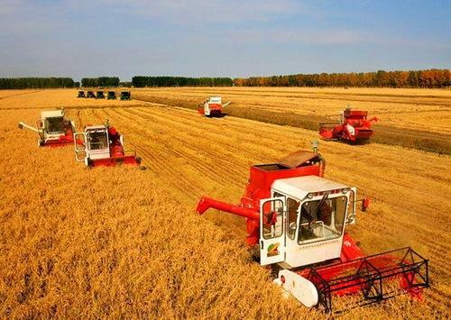 前三季度农业农村经济 稳中有进、稳中向好、稳中向优