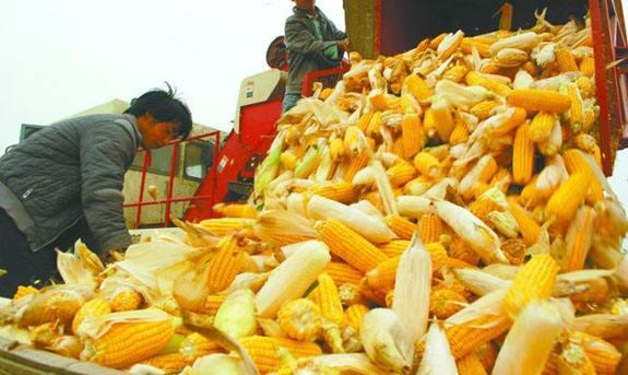 河北省农机购置补贴信息公开专栏建设维护和补贴咨询投诉电话检查情况的通报