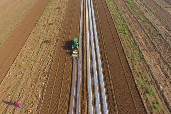 农机合作组织助力农业社会化服务