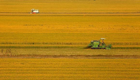山东省公布2017年第三批农机推广鉴定获证产品有关检测信息的通告
