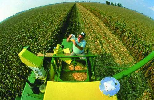 美国农业补贴的特点是什么?