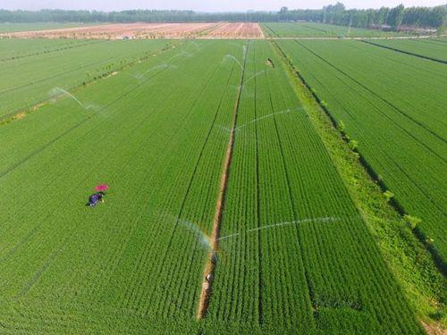 全国耕地保护工作会议:重点维护农民土地权益