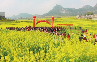 【图文】广西扎实推进耕地保护与质量提升工作