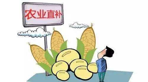 黑龙江玉米和大豆生产者补贴开始发放