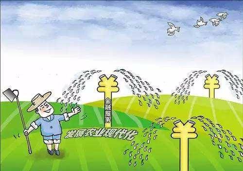 中央财政安排资金6.53亿元支持新型农业社会化服务体系建设