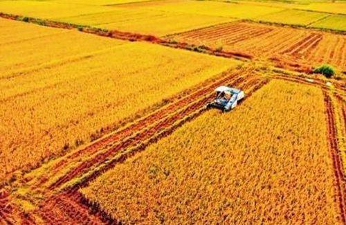 内蒙古关于办理农机购置补贴风险抵押金的通知