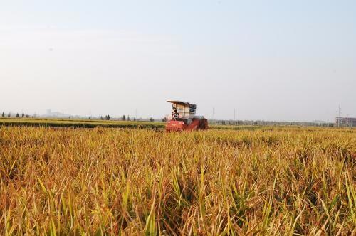 湖南省关于2017年第十批省级农机推广鉴定结果的公示