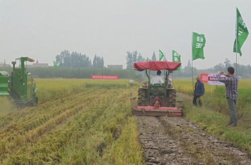 安徽省关于2017年第三次农机购置补贴信息公开专栏专项督导情况的通报