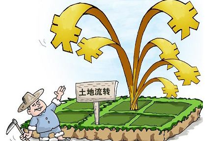 """推动土地流转,释放改革红利,为农民带来""""真金白银"""""""