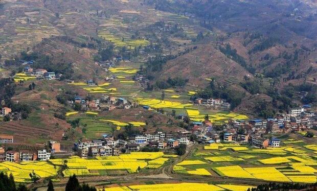 乡村振兴战略:现代化经济体系新引擎